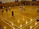 VICTOR杯羽毛球比赛第三场