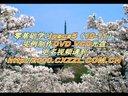 [PS]pscs5教学视频 pscs5抠图教程 ps教程视频 photoshopcs5教程