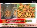 虫草种植技术视频