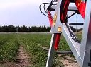 现代化农业之圣女果机械化种植视频