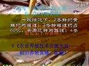 郓城黄鳝养殖技术视频