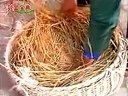 养鹅(肉鹅养殖)养殖技术视频