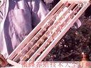 04_最新蜜蜂养殖技术视频_中华蜜蜂养殖技术视频_蜜蜂养殖技术光盘_