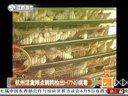 浙江:杭州活禽摊点鹌鹑检出H7N9病毒130406天天视频汇