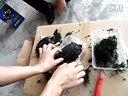 北美小鳄龟开箱。视频