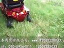 上海威之群1033美洲豹 超级越野电动轮椅车