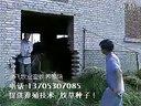 山羊养殖技术、玉米秸秆养羊系统技术