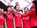2013第20届全球华人羽毛球锦标赛在北京通州举办