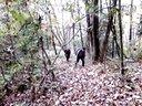 向黎明户外徒步军团徒步遭遇蚂蝗视频