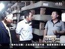 蝎子养殖技术,农村致富带头人的养蝎经历视频
