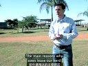 养牛人专访:延长奶牛寿命,必要性何在?
