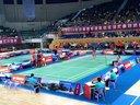 2014年中国羽毛球汤尤杯队内模拟赛 林丹VS王睁茗