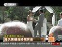 婚纱背景:美夫妻婚礼遇山火 漫天黑烟当婚纱背景     天天视频汇
