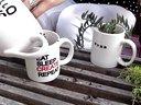用咖啡杯种植多肉植物组合DIY【醉花网】视频