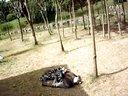 金纯伊2009年杭州野生动物园喂小灵猫视频