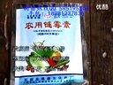 红心红阳猕猴桃种植技术03视频