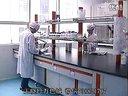类人胶原蛋白的研发及应用-王晓玲万色城 标清