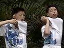 CCTV5羽毛球教学视频第42集