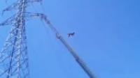 男子直播中跳下高压电塔