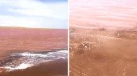 罕见奇观 青海湖湖水一夜之间变成血红色