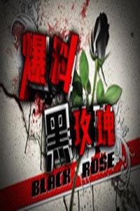 爆料黑玫瑰2010