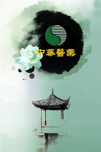 中华医药 2010