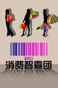 消费智囊团 2011