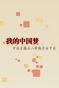 我的中国梦2013