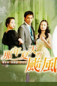 视频 那年夏天的台风-那年夏天的台风 BD版30集全完结...