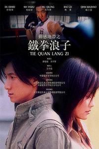 观看 在线 铁拳浪子/铁拳浪子DVD版33集全完结...