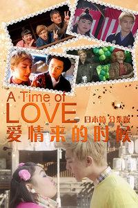 爱情来的时候日本篇(分集版)