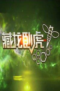 藏龙卧虎2015