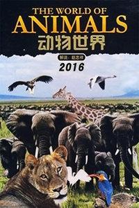 动物世界 2016