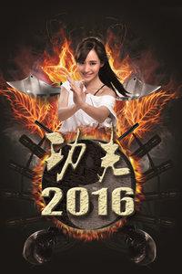 功夫2016