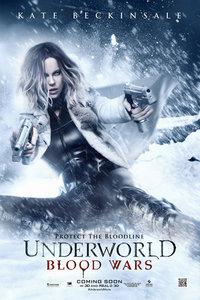 黑夜传说5:血战/Underworld 5
