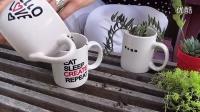 用咖啡杯�N植多肉植物�M合DIY【醉花�W】_超清��l