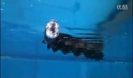 高科技玩意兒:能在水中游泳的仿生機器蛇