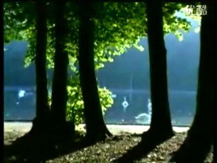 天鹅湖(主题曲)