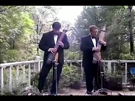 这是什么乐器演奏的卡农???