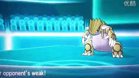 宠物小精灵XY mega进化日记08