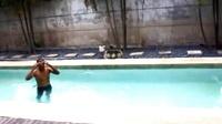 心有多大,游泳池就有多大~