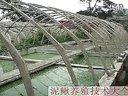 06_泥鳅网箱养殖技术_泥鳅豆腐汤_