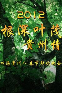 贵州卫视春节联欢晚会2012