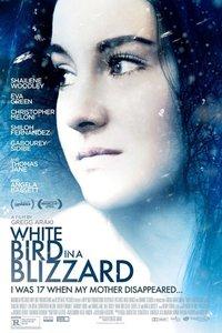 暴风雪中的白鸟
