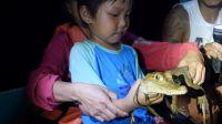 南極學前班(六):深夜乘船潛入亞馬遜抓鱷魚