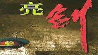 亮劍69(小說演播)