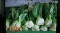 周述釗創業開重慶網上農貿市場