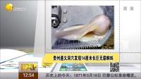 貴州遵義洞穴發現14厘米長巨無霸蝌蚪 說天下 150318