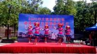 舞蹈 廣西民族特色節目舞蹈表演