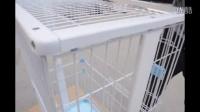 文寵折疊貓籠安裝視頻